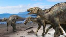 Japonci objavili svojho najväčšieho dinosaura, žil pred kataklyzmou