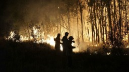 Spálená zem, stovky evakuovaných. V Austrálii bojujú s požiarmi