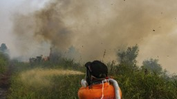 Pre hustý dym zatvárajú tisícky škôl. Indonéziu a Malajziu trápia požiare