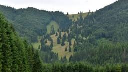 Plošné výruby v národných parkoch a vzácnych územiach zakážu