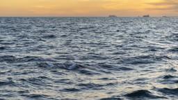 Američanka je rekordérkou, štyrikrát za sebou preplávala La Manche