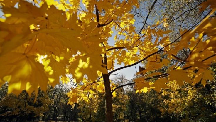 Deň rovnako dlhý ako noc. S rovnodennosťou prichádza jeseň