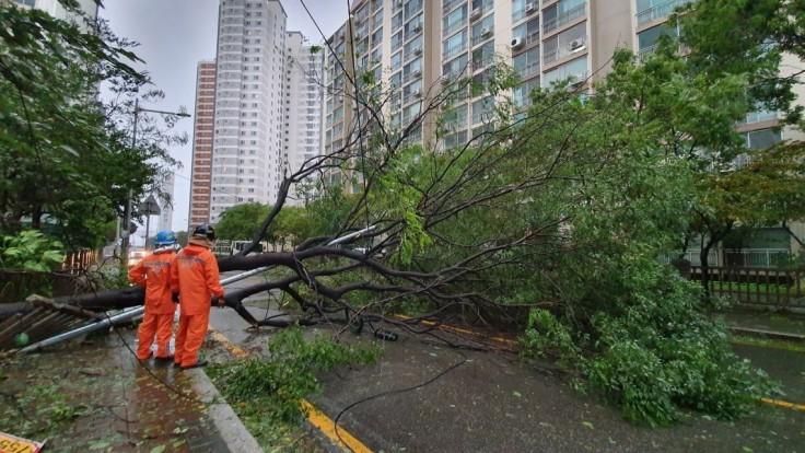 Kóreou sa prehnal tajfún, ľudí odstavil od elektriny a poškodil domy