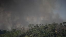 Na ochranu pralesov pôjdu stovky miliónov, rozhodli na summite