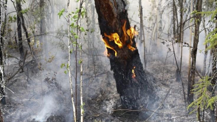 Uhasené, hlásia z Ruska. Sibír bojovala s rozsiahlymi požiarmi