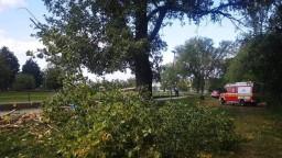 Slovensko čelí silnému vetru, strom zabil školáka na prechádzke