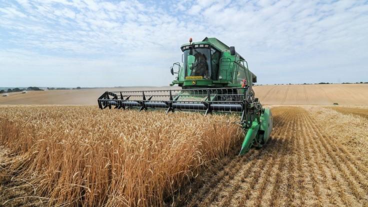 Múka nezlacnie a bude jej menej, avizujú po žatve poľnohospodári
