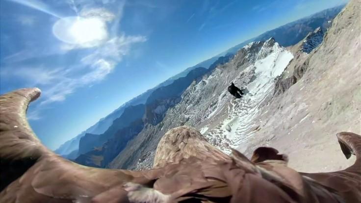 Topenie ľadovcov chcú sfilmovať, kameru zverili orlovi Victorovi