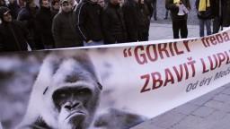 Politici reagujú na údajnú nahrávku Gorily, ohlásili prvé protesty