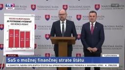 TB R. Sulíka a J. Rudolfa o kauze Gorila a o možnej finančnej strate štátu