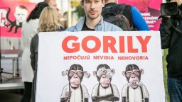 Pripravujú Lex Haščák a neboja sa, protestom reagovali na Gorilu