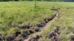 Otepľovanie Zeme môžu urýchliť rašeliniská, ktoré jej doteraz pomáhali