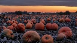 Halloweenska noc bude mrazivá, potom by mala prísť úľava