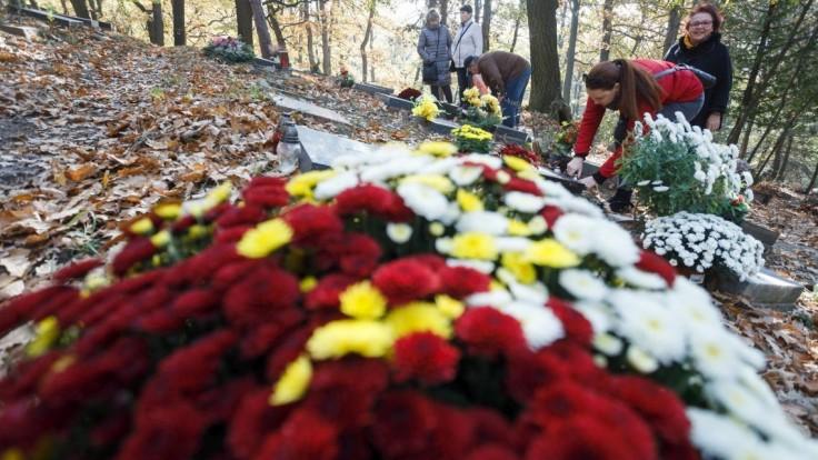 Na hroboch sa jedlo a pilo. Kvety sa začali nosiť len nedávno