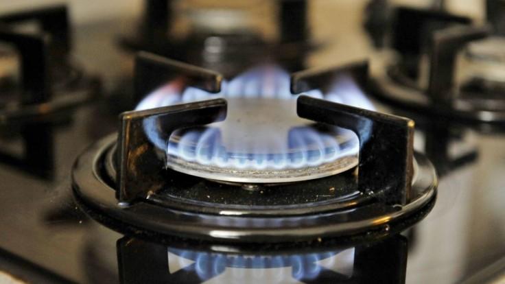 Zmrazenie cien plynu, o ktorom rozhodla vláda, je len dočasné