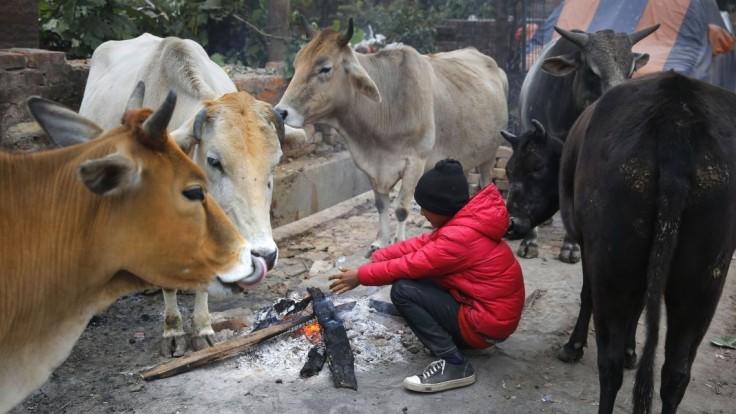 Zima je aj v Indii, namerali najchladnejší deň za 119 rokov