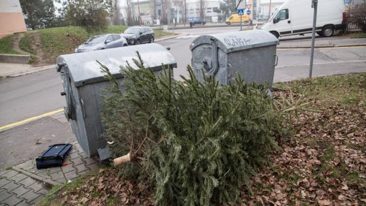 Sviatky sú za nami, začali s odvozom vianočných stromčekov