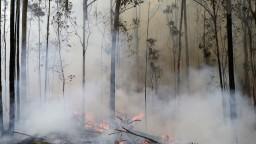 Dymu z Austrálie už nebráni ani atmosféra, môže obletieť Zem