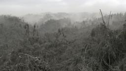Sopka Taal stále chrlí lávu, môže to byť predzvesťou väčšieho výbuchu