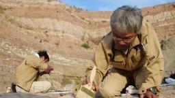 Našli pozostatky megaraptora. Bol jeden z posledných na Zemi