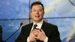 Musk ukázal ošípanú s čipom. Chcú otestovať aj ľudský mozog