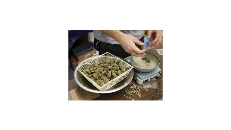 Zo zhabaného konope by bolo možné pripraviť takmer 2900 dávok drogy