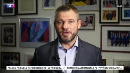 Zodpovednosť za celoplošné testovanie má premiér, tvrdí Pellegrini