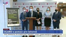TB predstaviteľov OĽANO o pomoci pre tehotné mamičky