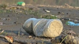 Odpad z Ružína chcú recyklovať, za zber ponúkajú peniaze