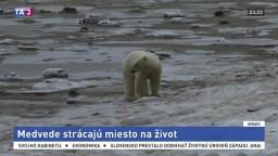 Vyvíjajú technológie, ktoré môžu ochrániť ľadové medvede