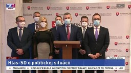 TB P. Pellegriniho o aktuálnej politickej situácii