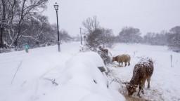 Španielsko čelí snehovej búrke, najmenej štyria ľudia prišli o život