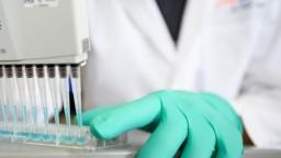 Objavili novú mutáciu koronavírusu, šíri sa v nemeckej nemocnici