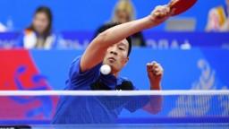 Po dlhej pauze bude turnaj stolnotenistov, nechýba ani Jang Wang