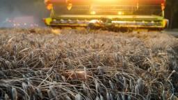 Redistributívna platba: Poľnohospodárov podporia od prvého hektára