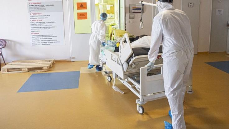 Boj nevyhráme na JIS-kách, treba začať skôr, varuje komora lekárov
