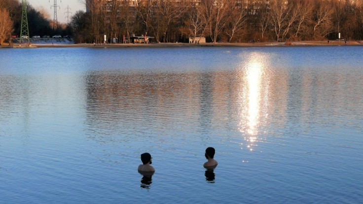 Uhynutá labuť mala vtáčiu chrípku, pred kúpaním v jazere varujú