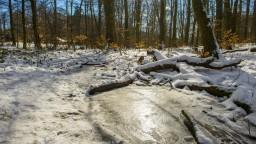 Zimy sú čoraz teplejšie. Slovensko môže byť o 30 rokov iné