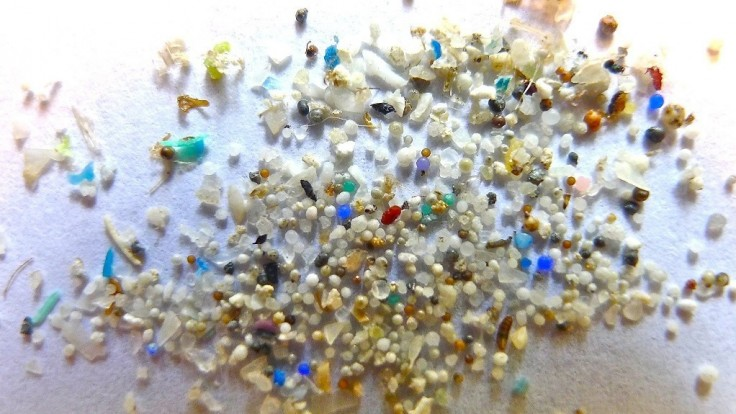 Lepkavý biologický povlak zachytí a odstráni mikroplasty z prostredia
