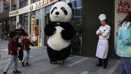 Čína sčítavala obyvateľov. Počet narástol o vyše päť percent