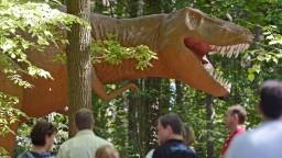 Prevádzkovateľ Dinoparku sa bráni: Neodčerpávali sme ZOO peniaze