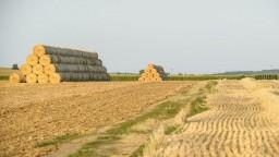 Poberaniu neoprávnených agrodotácií by mala zabrániť avizovaná modernizácia