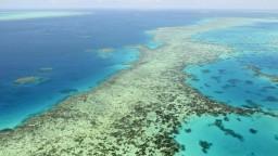 Austrália odmieta zaradenie koralovej bariéry medzi ohrozené lokality UNESCO