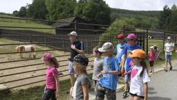 Na východe majú netradičný denný tábor. Deti môžu bližšie spoznať ZOO