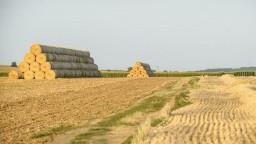 Poľnohospodári dažde vítajú, extrémne sucho ohrozuje úrodu