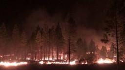 USA nezvládajú požiare, na pomoc im prichádzajú aj hasiči zo zahraničia