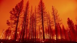 Turecko a Grécko sužujú extrémne požiare, stovky obyvateľov museli evakuovať