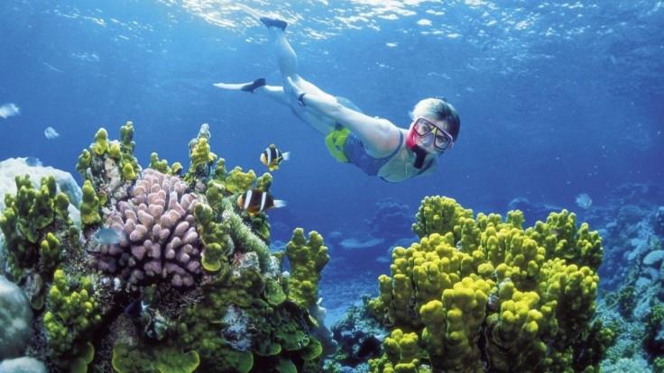 Thajsko zakázalo používanie opaľovacích krémov, ktoré ničia koraly