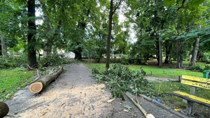Augustová smršť zničila v Banskej Bystrici 900 stromov, škody sú za vyše 77-tisíc eur
