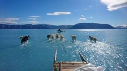 Cítite úzkosť z klimatickej zmeny? Nie ste sami. Toto odporúčajú vedci